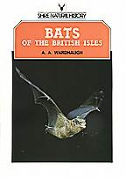 Bats of the British Isles - Product Image