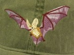 Embroidered Pallid Bat Cap - Product Image