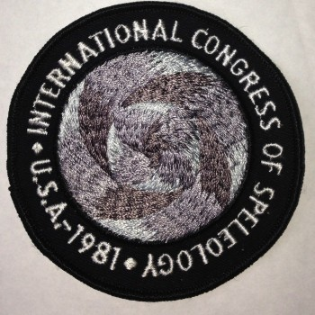 1981 ICS Patch - Product Image