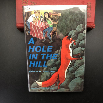 A Hole in the Hill  - Product Image