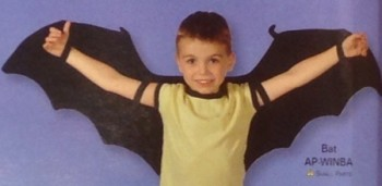 Bat Wings - Product Image