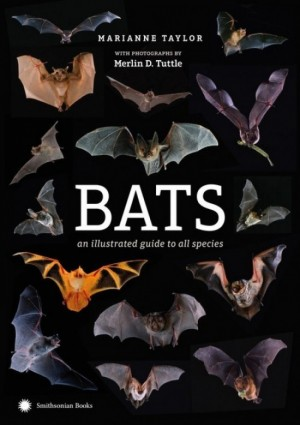 Bats: An Illustrated Guide to All Species (Photographed by Merlin Tuttle)  BACK ORDER UNITL MID NOVEMBER - Product Image