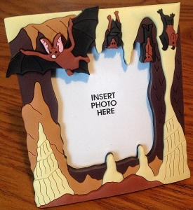Bats In Cave Magnetic Photo Holder - Product Image