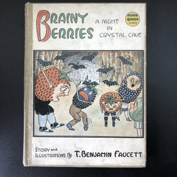 Brainy Berries; A night in Crystal Cave - Product Image
