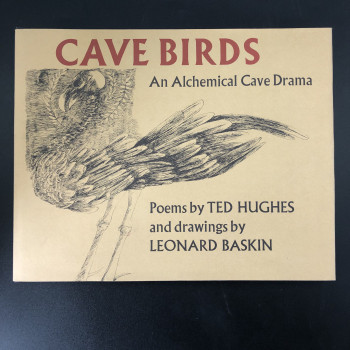 Cave Birds - Product Image
