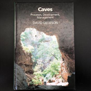 Caves; Processes, Development, Management (1st) - Product Image