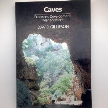 Caves Processes, Development, Management - Product Image