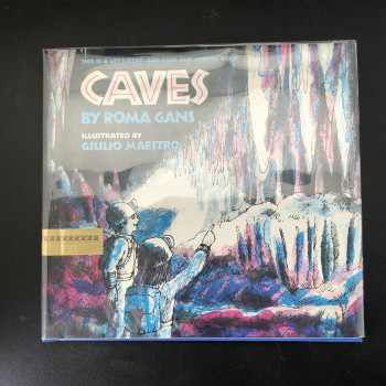 Caves by Roma Gans - Product Image
