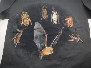 North American Bats Hanging Around  Adult or Youth Tee Shirt - Product Image