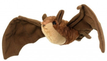 Conservation Critters Little Brown Bat - Product Image