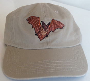 Embroidered Big Eared Bat Cap - Product Image