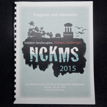 Hidden Landscapes... Hidden Challenges, NCKMS 2015, program and abstracts - Product Image