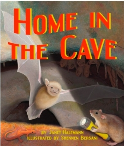 Home In the Cave - Product Image