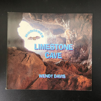 Limestone Cave - Product Image