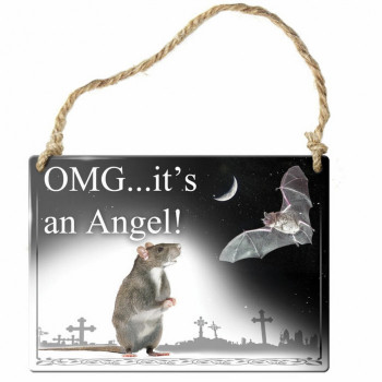 OMG It's an Angel! Small Sign - Product Image