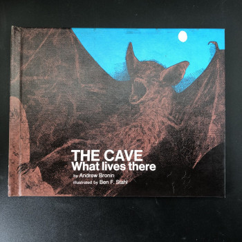 The Cave: What lives There - Product Image
