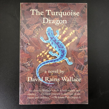 The Turquoise Dragon - Product Image
