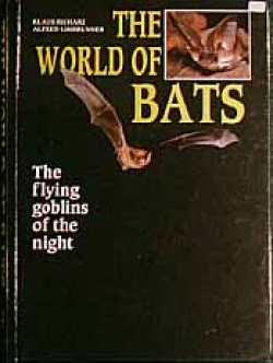 The World Of Bats - Product Image