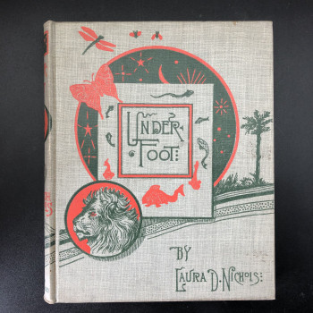 Under Foot What Harry and Nelly Learned of the Earth's Treasures Copy #1 - Product Image