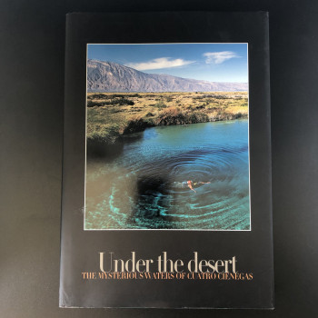 Under The Desert - Product Image